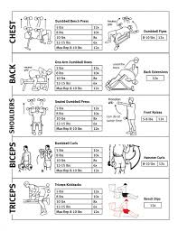 free weight exercises upper body weight routine operation fit