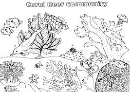 Coral Coloring Pages Sea Plants Coloring Pages Best Coral Reef