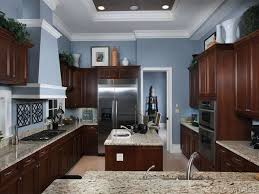 dark cabinets kitchen. Amazing Light Blue Kitchen Walls With Dark Cabinets