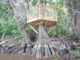 inside of simple tree houses. Interior: Do It Yourself Tree Houses Amazing Home House Ideas Uk Treehouse To Build Throughout Inside Of Simple