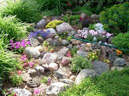 Small Picture 12 best Rock Garden images on Pinterest Garden ideas Backyard