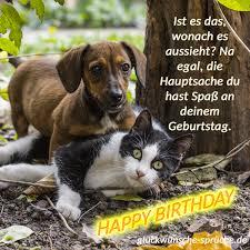 Geburtstagsbilder Lustig Cool Und Einmalig