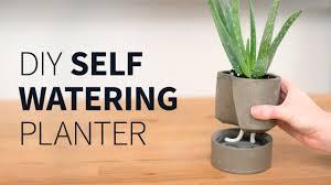 Captivating DIY Self Watering Concrete Planter ...