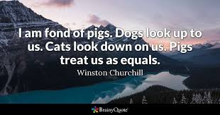 Dog Death Quotes 53 Stunning I Am Fond Of Pigs Dogs Look Up To Us Cats Look Down On Us Pigs