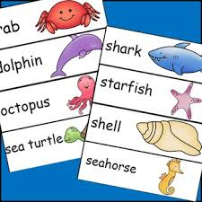 Ocean Animals Pocket Chart Cards And Writing Activities