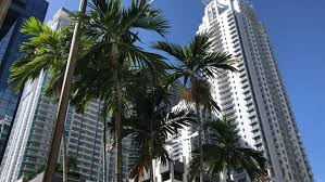Glut of <b>luxury</b> condos across US leads to ghost towers: 'Prices need ...