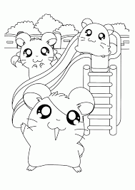 Hamster Tunnel Coloring Pages Print Coloring