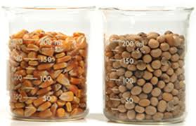Having Trouble with Corn and Soy? - Better Nutrition Magazine ...