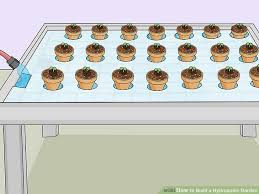 how to build a hydroponic garden. image titled build a hydroponic garden step 14 how to