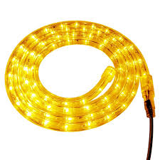 Bird Dog Rope Lights Gold Custom Led Rope Lights Flexi Rope Lights Birddog