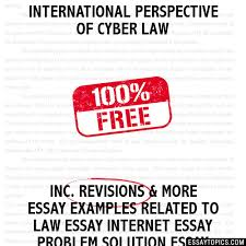 international perspective of cyber law essay international perspective of cyber law
