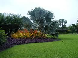 Small Picture Design Study Fairchild Tropical Botanic Garden Miami Fl Flickr