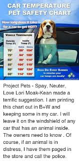 Car Temperature Pet Safety Chart How Long Does It Take Racar