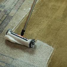 use kickass carpet cleaner in a can with the magic cleaning carpet brush for the best