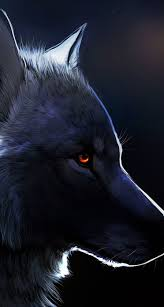 black wolf with red eyes wallpaper. Red Eyed Black Wolf On With Eyes Wallpaper Pinterest