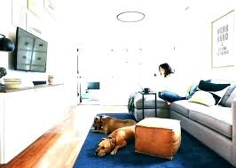 Image Same Room Best Of Pet Friendly Couches And Kid Most Dog Sofa Comfortable Full Size Barkpost Decoration Pet Friendly Couches