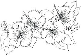 Rose Flower Coloring Pages Rose Flower Coloring Page Rose Flower