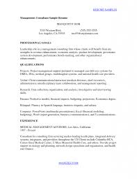 Resume Information Security Consultant Cover Letter Best