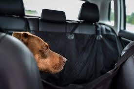 the best dog car seat covers of 2021