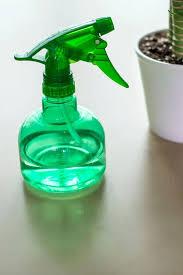 natural spider repellant spray