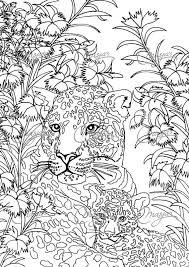 Masjas Leopards Coloring Page Coloring Pages First Edition