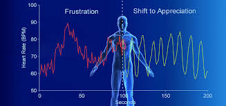Image result for emotional heart rate variability picture