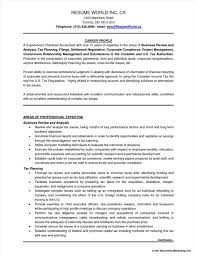 Professional Cv For Chartered Accountant Resume Resume