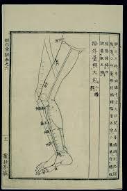 Acu Org Chart File Acu Moxa Chart Spleen Channel Of Foot Taiyin In The