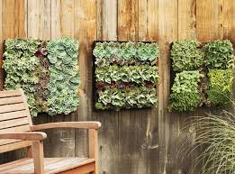 24 best indoor living wall planters ideas images on living wall planter