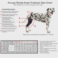 Dachshund Size Chart Interestprint Mens Boxer Briefs Dachshund Xs 3xl Dalmatian