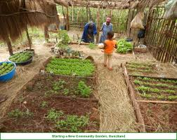 Kitchen Garden International Kitchen Gardeners International Changemakers