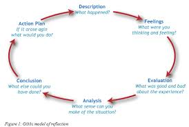 Describe   Choose one part of the learning experience and write about what  happened  Analyse