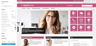 Sharepoint Design Tools Sharepoint Intranet Branding And Design Made Easy