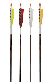 Beman Ics Bowhunter Carbon Arrows