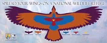 Birding In The Refuge System National Wildlife Refuge System