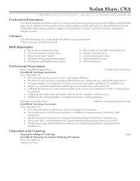 Summary Examples For Resume Resume For Sample Resume Examples Resume