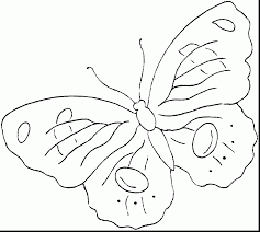 Small Picture superb printable butterflies coloring pages with butterfly color