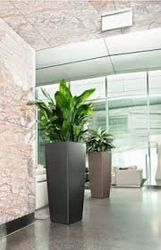 office flower pots. the art of decorating with tall planters office flower pots r