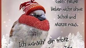Schönen Tag Wünschen Bilder Bilder Und Sprüche Für Whatsapp Und