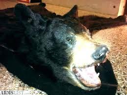 bear head rug bear skin rug real black 0 lb x fake faux grizzly medium size bear head rug