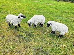 garden sheep 0 99 dealsan