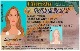 Florida Beautiful - com Bafaeeffceebc Yanabeealiraq Template Drivers License