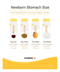 Baby Stomach Capacity Chart 42 Complete Stomach Size