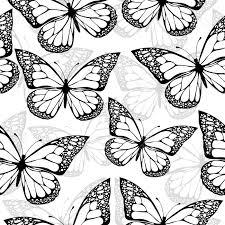 最高のコレクション 蝶々 イラスト 白黒 無料の印刷用ぬりえページ