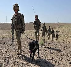 Koninklijke Landmacht - Wikipedia