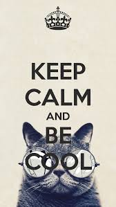 Keep Calm Quotes Cool 48 Keep Calm Quotes And Images Ssshh Pinterest Calming Fun