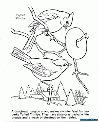 Coloring Pages For Kids Nature With Nature Cat Coloring Pages Free