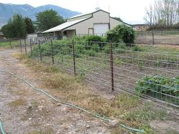 wire farm fence. Wire Panels Hung On Hooks That Farm Fence U