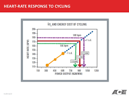 Ymca Bike Test Chart Ace Personal Trainer Manual Ppt Video Online Download