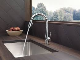 Delta Chrome Kitchen Faucets Faucetcom 9113 Dst In Chrome By Delta